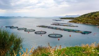 Νηρεύς: Στα €51 εκατ. το τίμημα για την πώληση των παραγωγικών εγκαταστάσεων