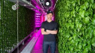 The future of food: Why farming is moving indoors