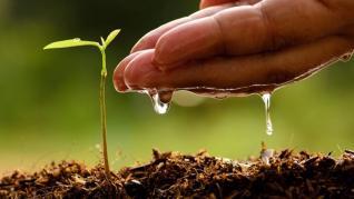 ΕΛΣΤΑΤ: Άνοδος 1,5% του δείκτη τιμών εκροών στη γεωργία-κτηνοτροφία