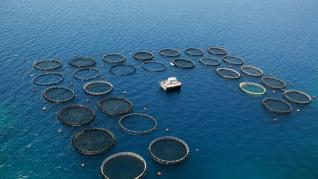 Προχωρά το Project Nemo, τι χάνουν Νηρέας - Σελόντα